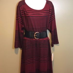 Haani Sweater Dress with Belt Size 2X